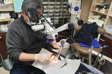 심평원, 치과 근관치료 적정성 평가 7월부터 실시