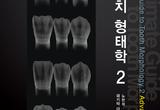 주변 치아와 조화 '심미기공' 소개